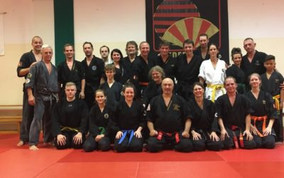 Intensivseminar Goshindo mit Hanshi Alain Sailly in Graz, 27.-29.7.2018